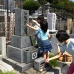 【親子関係】母の命日とお墓のお掃除