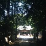 代々木八幡宮にてサヌキ男性性とアワ女性性の結び
