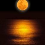 7月28日は水瓶座の満月&皆既月食です。テーマは『自己革命のスタート』です。