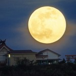 5月11日はさそり座のウエサクの満月です。テーマは、夏至に向けての内面からの変容と分離感の統合です。