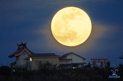 11月14日は、牡牛座の満月です。...